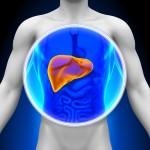 肝臓がんの検査方法と治療法