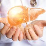 γ-GTPの数値が高い人が気にしたい肝臓がん。そのリスクと治療費を考えよう