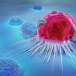 前立腺がん、乳がんに関わりが? 見過ごせない、がんと「ホルモン」の話